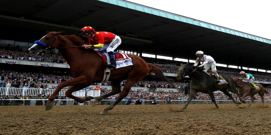 New York race tracks report 10 horse deaths within 9 days, 50 since January